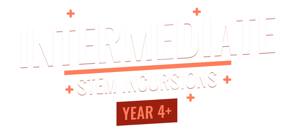 Intermediate STEM incursions
