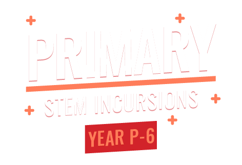 Primary STEM incursions